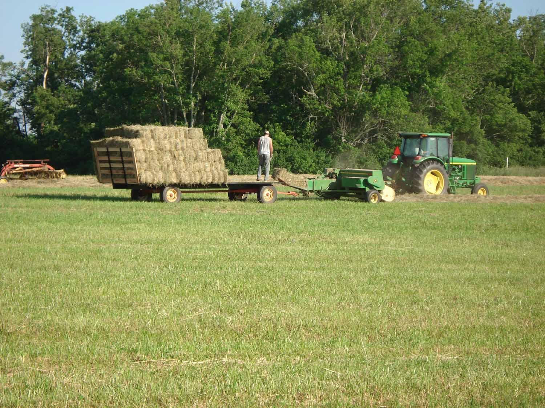 bailing-hay